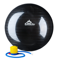 Black Mountain Exercise Ball with Pump